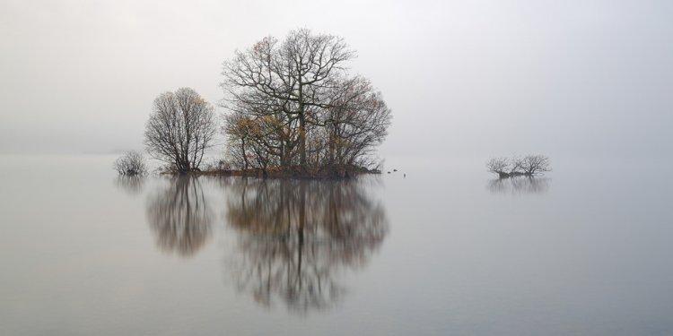 Loch-lomond mist