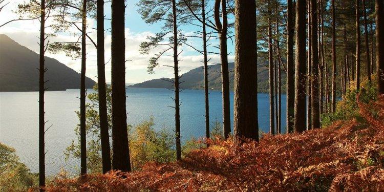 Loch Lomond campsites   Best