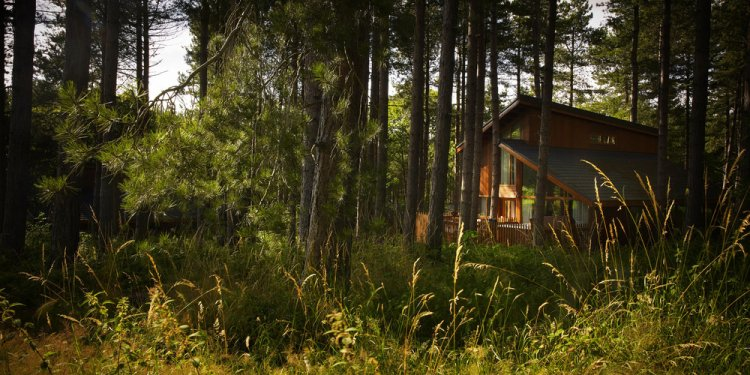 Forest places to stay self