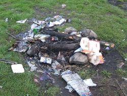 fires web site left with litter by irresponsible visitors