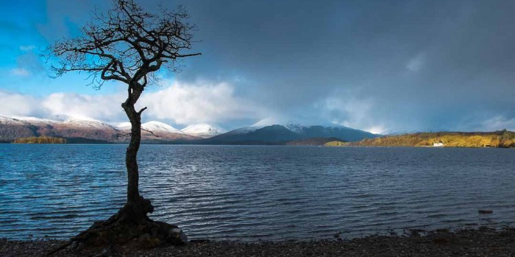 Ardlui Lodge Loch Lomond
